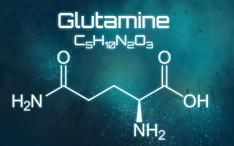 Benefits of Glutamine in Personal Training Nutrition Plan